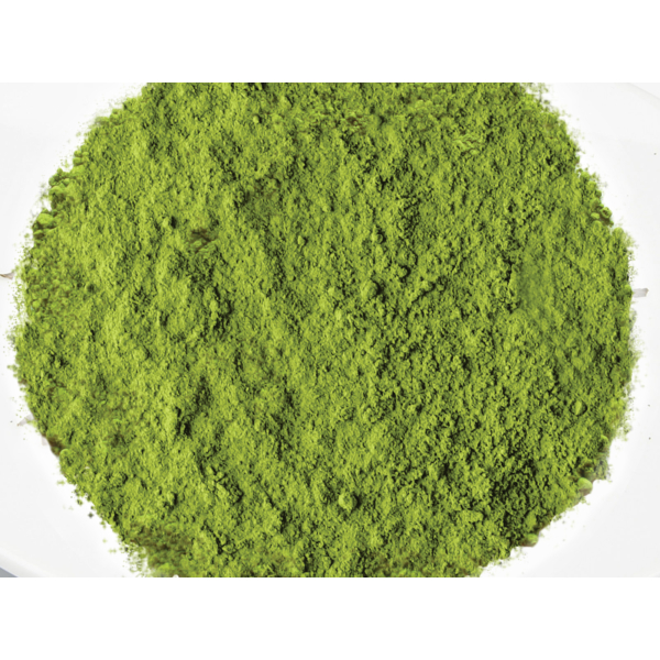 GATAMO Green Matcha Tea
